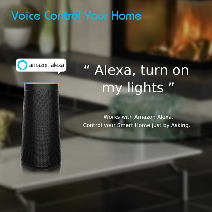 Wifi / Alexa Control Smart WIFI Speaker Featured With The Alexa Voice Service